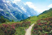 Dotknąć Mont Blanc